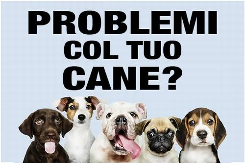 Problemi col tuo cane?
